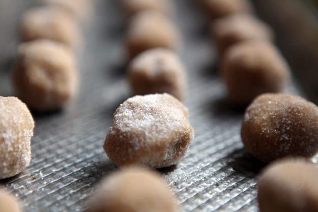 Close up of peanut butter cookie balls in rows coated in sugar on a metal baking sheet