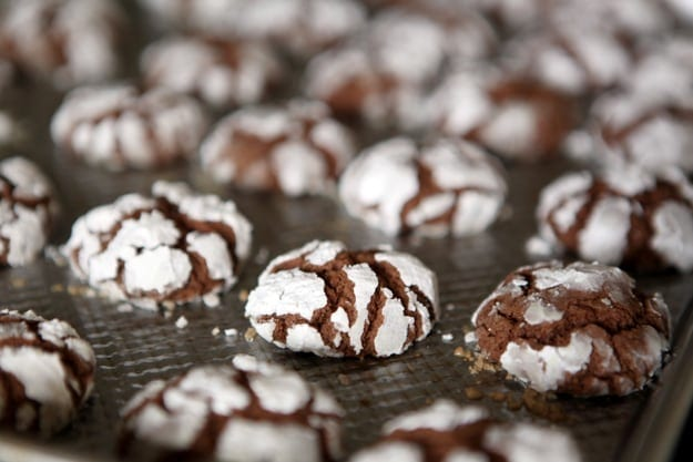 Christmas Cookie Week: Chocolate Crinkles // The Speckled Palate