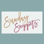 Sunday Snippets: The (Finally!) Fall Edition