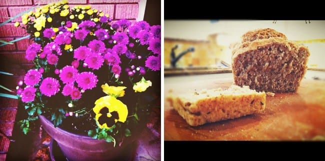 Collage of two images showing purple and yellow flowers and sliced bread on cutting board