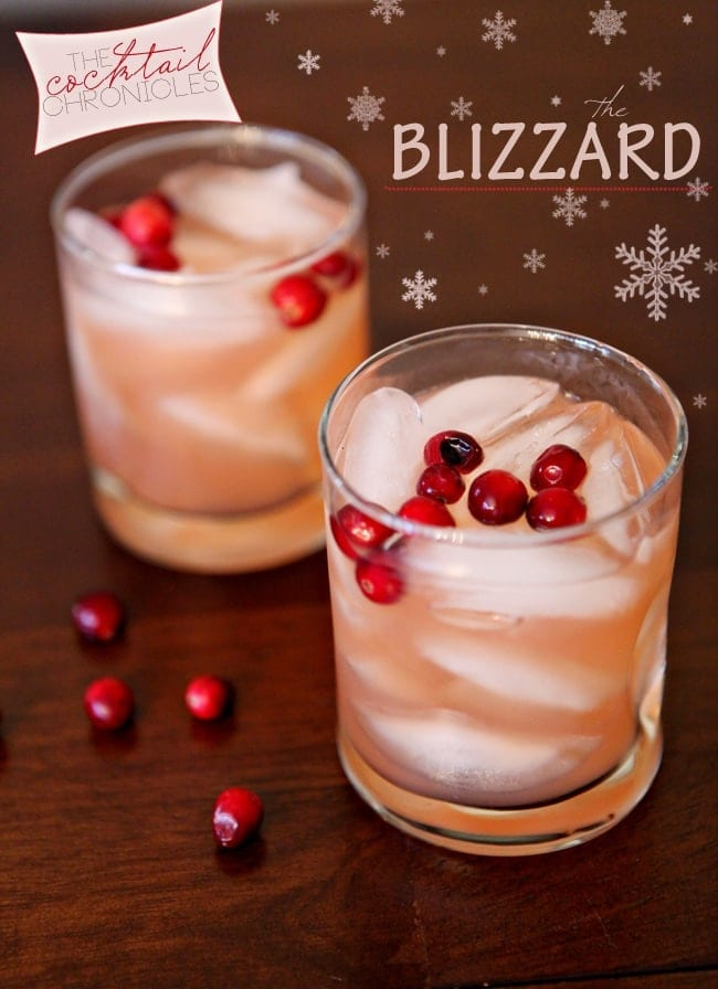 Two Blizzards on a wooden table, surrounded by and garnished with fresh cranberries