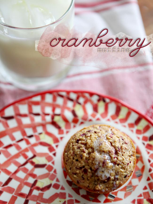Cranberry Muffins // The Speckled Palate