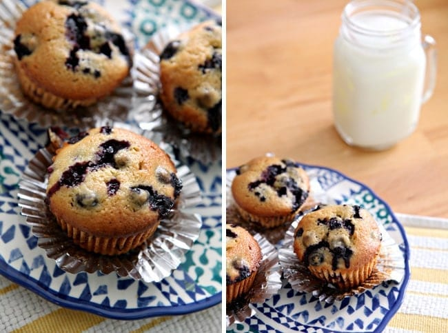 Vegan Blueberry Muffins // The Speckled Palate
