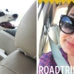 Sunday Snippets: Memorial Day Roadtrip Edition