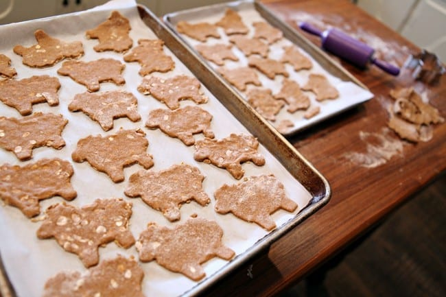 Pumpkin and Peanut Butter Dog Biscuits // The Speckled Palate