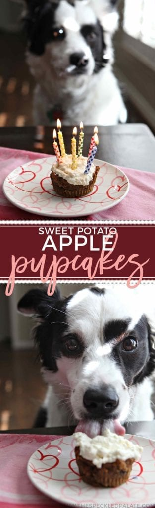 A dog sitting at a table in front of a sweet potato apple pupcake