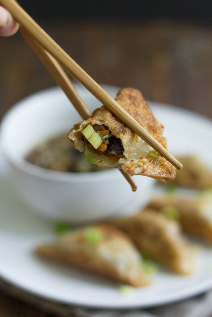 Vegetarian Shiitake Gyoza {Guest Post from 40 Aprons} // The Speckled Palate