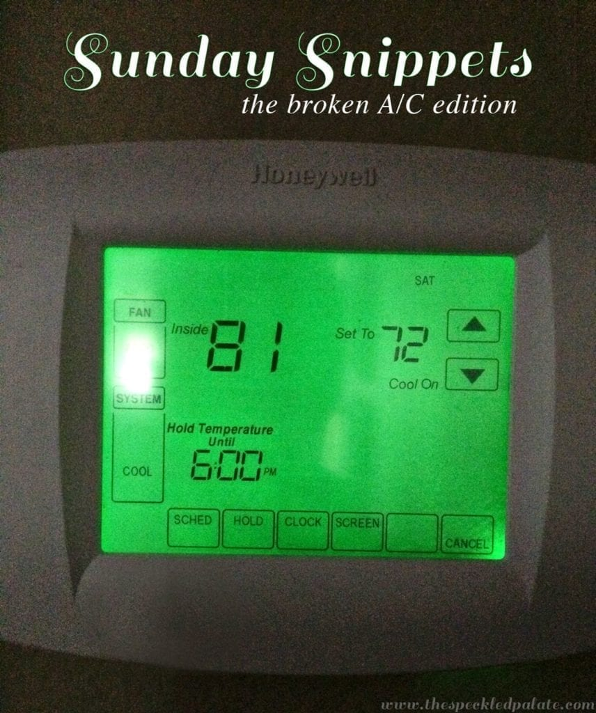 Sunday Snippets: The Broken A/C Edition // The Speckled Palate
