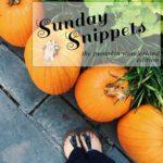Sunday Snippets: The Pumpkin Wonderland Edition