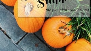 Sunday Snippets: The Pumpkin Wonderland Edition