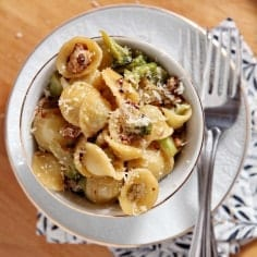 Quickly cooked and easy to eat, Turkey and Broccoli Orecchiette is the perfect weeknight meal for a busy family. Ground turkey is cooked with garlic and spices, then tossed with broccoli, orecchiette and parmesan to make a delectable dish.