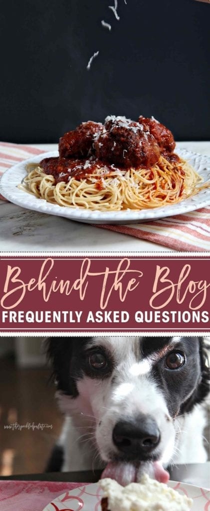 Spaghetti and meatballs on dish and dog licking food on plate
