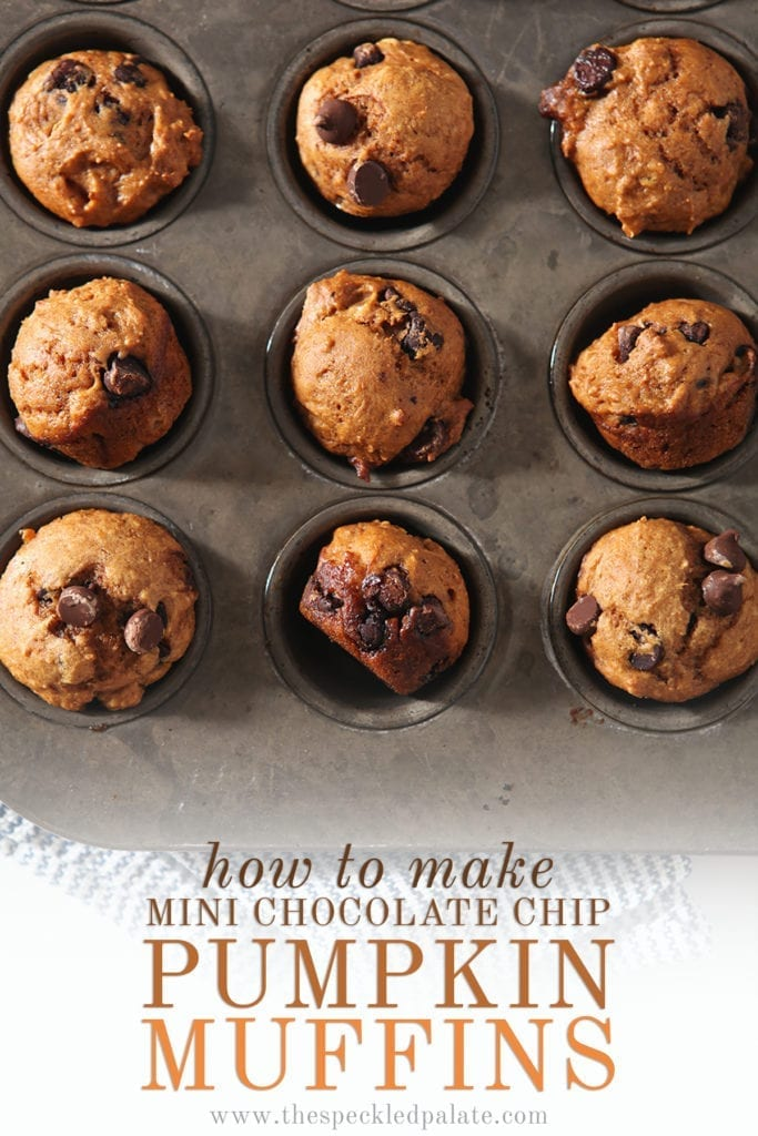 A muffin tin with nine baked mini pumpkin muffins in it with the text 'how to make mini chocolate chip pumpkin muffins'