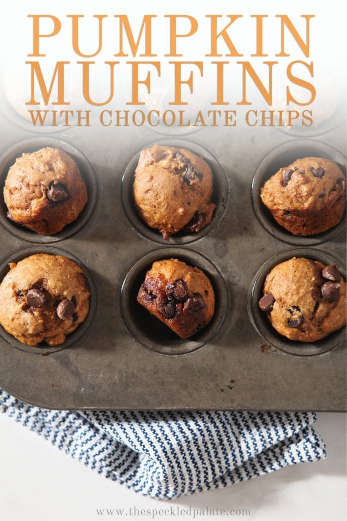 A muffin tin with nine baked mini pumpkin muffins in it with the text 'pumpkin muffins with chocolate chips'