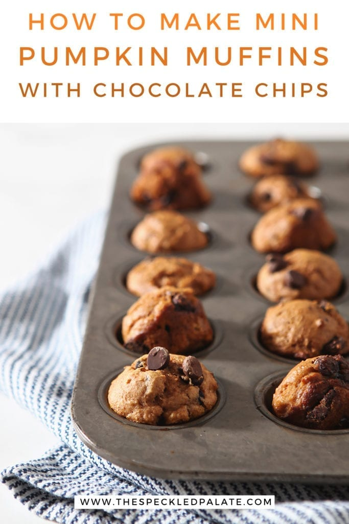 A muffin tin of baked mini pumpkin muffins with the text 'how to make mini pumpkin muffins with chocolate chips'