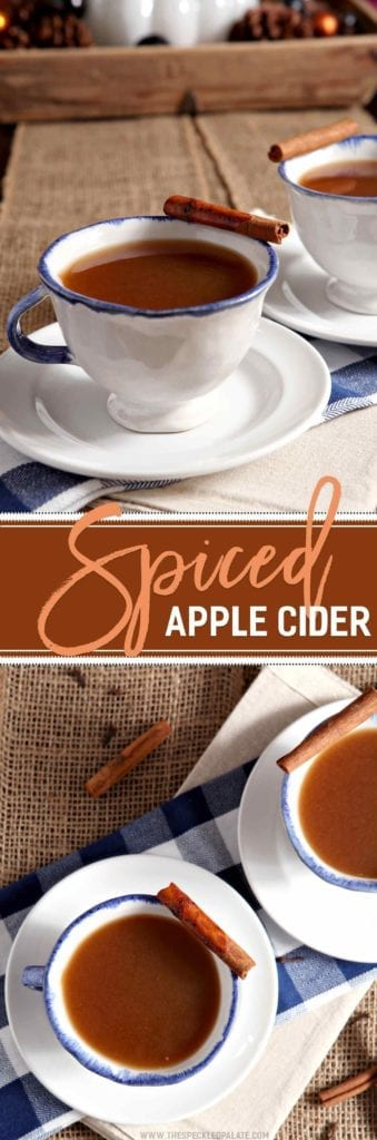 Spiced Apple Cider is the perfect warm drink for a chilly fall evening and especially for Halloween! 100% apple juice, cinnamon sticks, whole cloves and a little brown sugar simmer together over low heat until the juice transforms into a spicy, seasonal favorite. Pour the Spiced Apple Cider into your favorite to-go mug, then sip slowly while trick-or-treating! This drink is also delicious with a splash of rum or bourbon if you're feelin' fancy.
