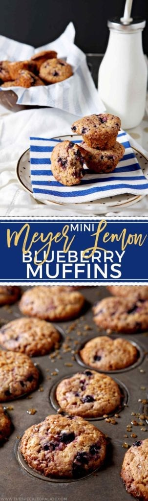 Mini Meyer Lemon Blueberry Muffins make the best winter breakfast for adults and kids alike! Low in sugar, these whole wheat muffins bake up quickly and add lemony goodness to the morning routine. Frozen wild blueberries, Meyer lemon zest and lemon juice serve as key flavor components of these muffins, which are also dairy-free. Naturally sweet, dairy free and tart, Mini Meyer Lemon Blueberry Muffins will become your family's favorite breakfast!