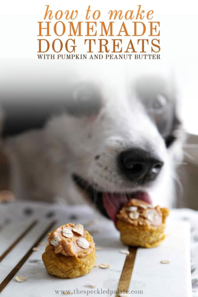 A black and white dog licks a pumpkin pupcake on a marble slab with the text 'how to make homemade dog treats with pumpkin and peanut butter'