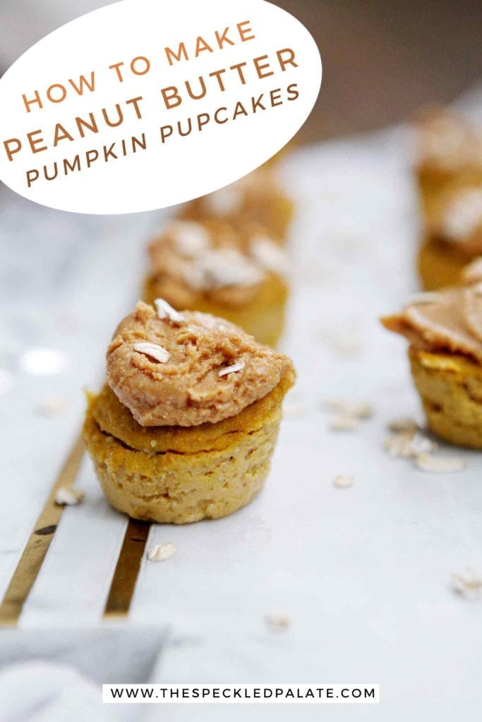 Several Peanut Butter Pumpkin Pupcakes are lined up on a marble slab with the text 'how to make peanut butter pumpkin dog treats'