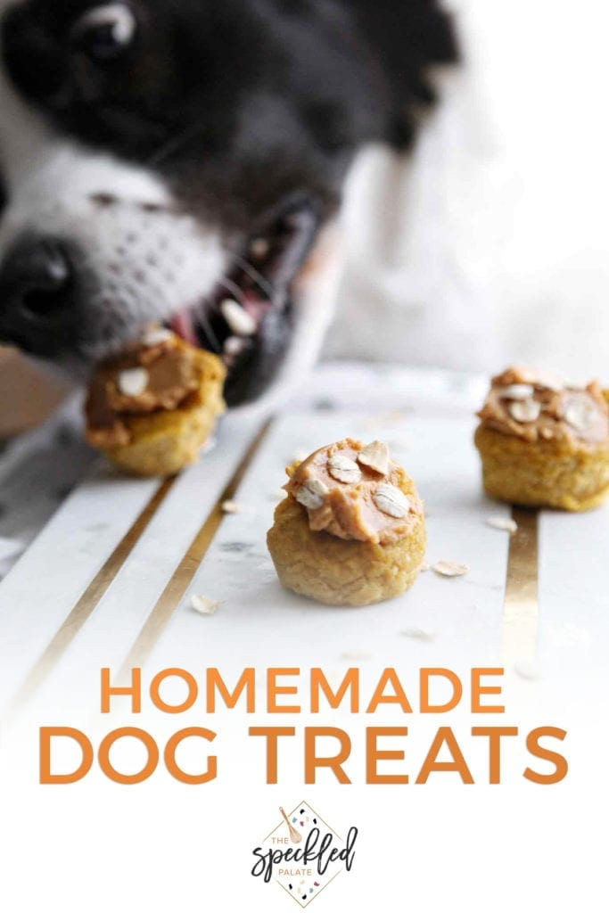 Three Peanut Butter Pumpkin Pupcakes on marble are eaten by a black and white dog with the text 'homemade dog treats'