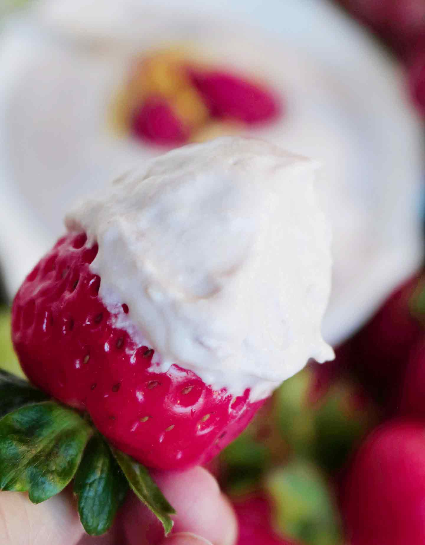 Close up of a strawberry, dipped into Raspberry Yogurt Fruit Dip