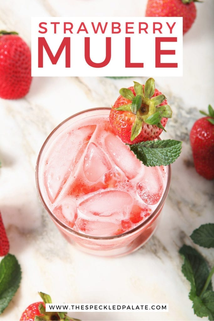 Overhead of Strawberry Mule, with a big text box above it