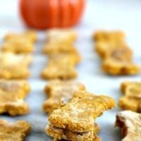 For the Pups: Oatmeal Pumpkin Dog Treats