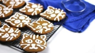 Cardamom Ginger Cat Gingerbread Cookies