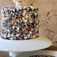 Dessert Idea #1: Easy Day of the Dead Cake