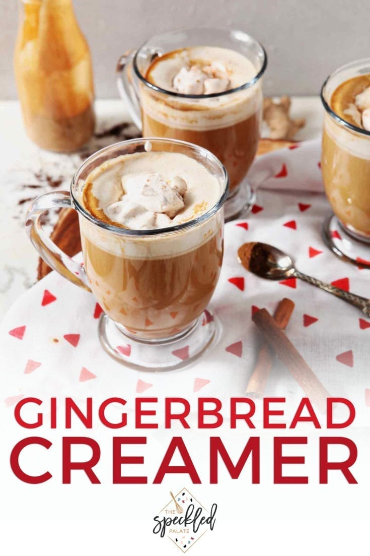 Make Homemade Gingerbread Coffee Creamer to add some seasonal flavors to your mornings throughout the holiday season! #christmas #speckledpalate