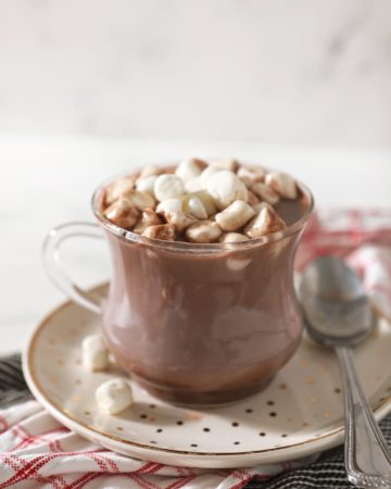 A close up of a Gourmet Hot Chocolate, topped with mini marshmallows