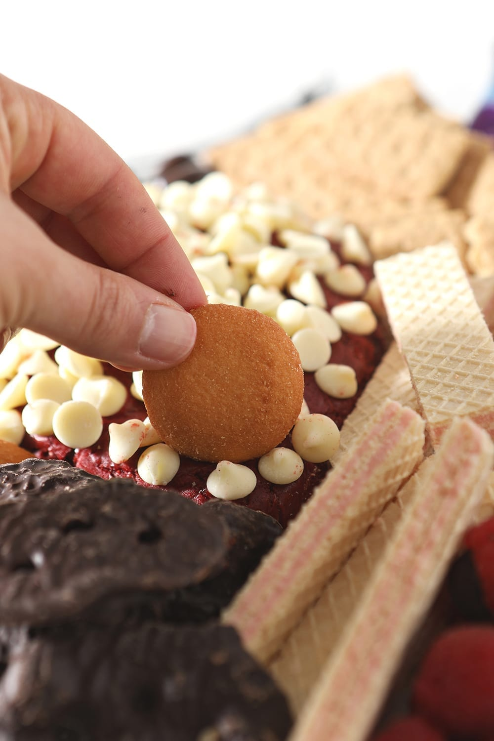 A person dips a wafer cookie into the red velvet cheese ball
