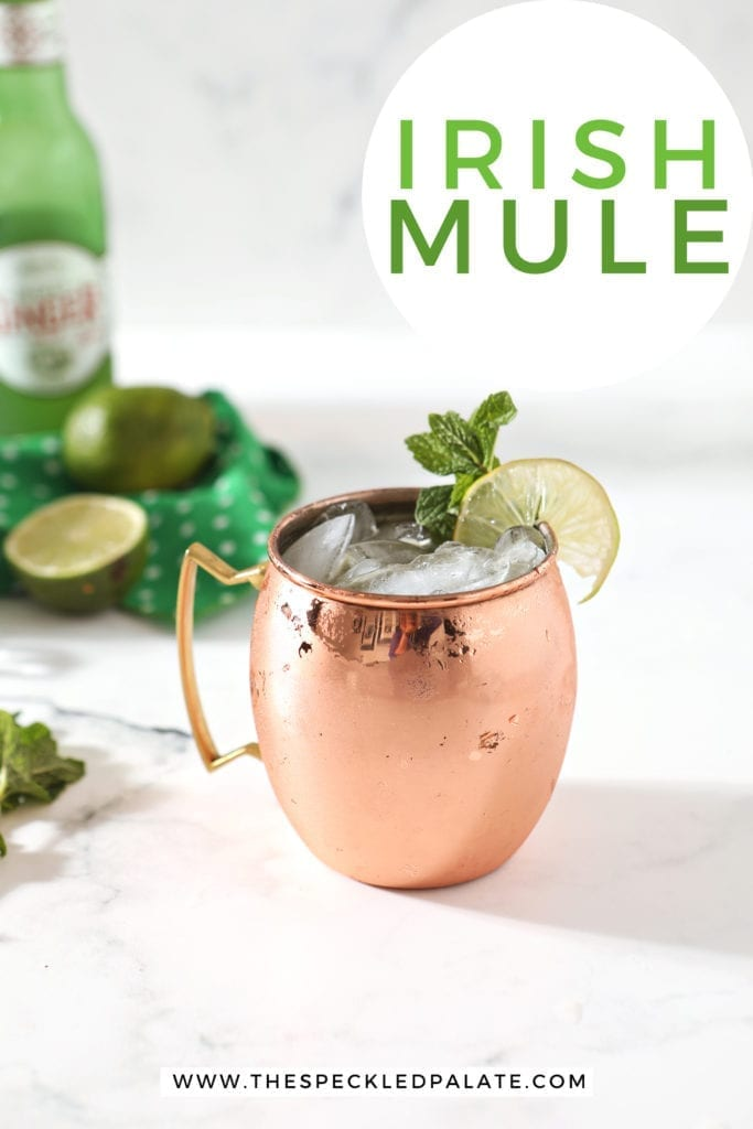 A copper mug holds the mule, surrounded by ingredients and Pinterest text