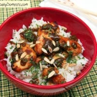 Tuesday's Dinner:Chicken Satay with Coconut Rice