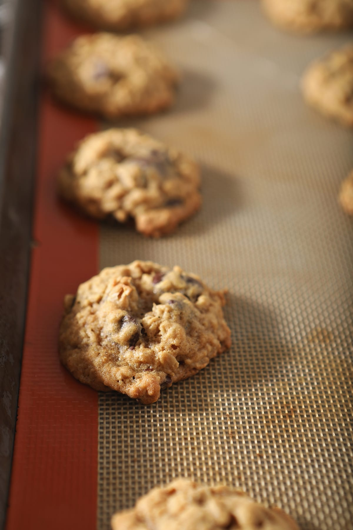 Cookies on a lined baking sheet after baking