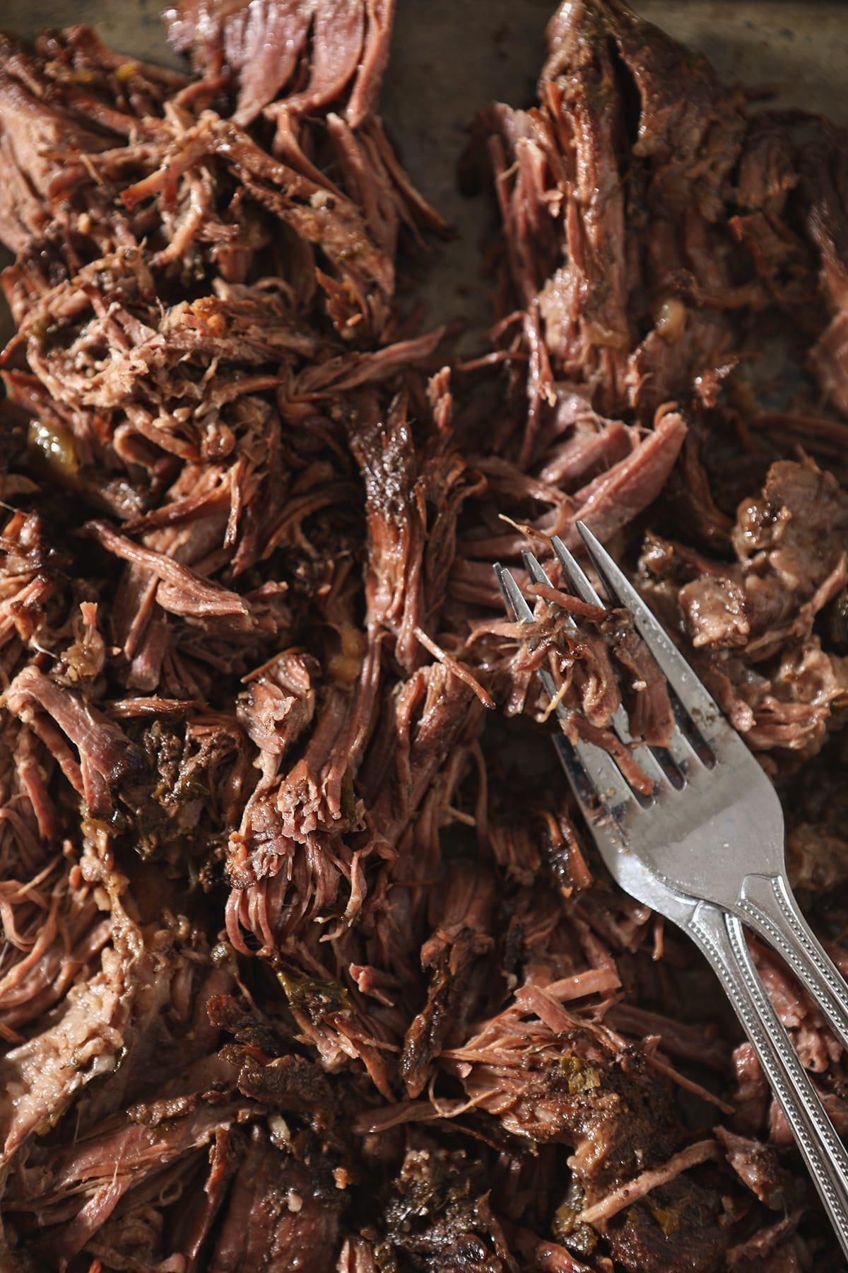 Close up of shredded slow cooker pot roast with forks