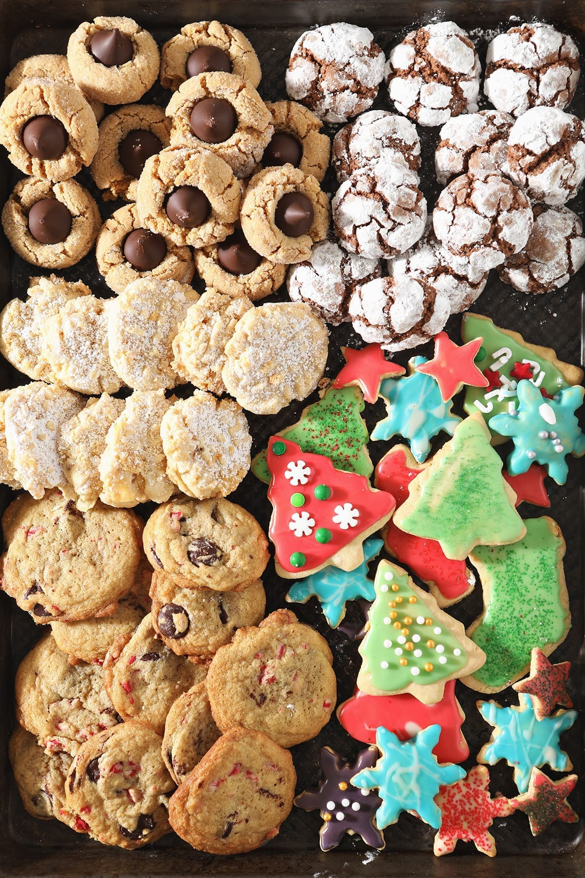 A tray of colorful holiday cookies including Christmas-shaped and decorated sugar cookies, potato chip cookies, crinkle cookies, peanut blossom cookies and more favorite holiday cookies from above